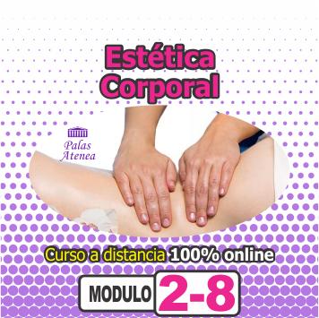 ESTÉTICA CORPORAL ONLINE – MÓDULO 2/8
